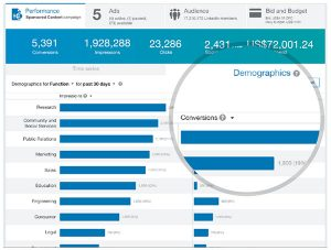 linkedin insight, linkedin marketing, aanha services linkedin analytics,  linkedin performance