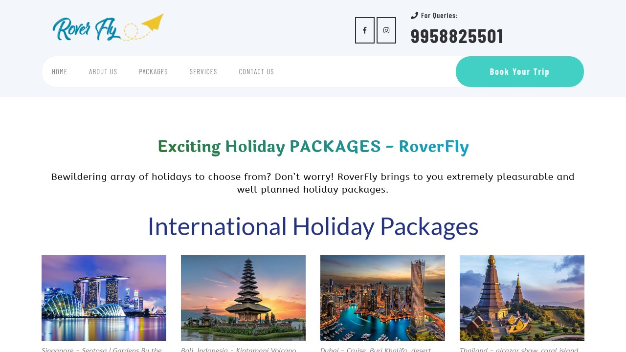 Best Holiday packages _ International & Domestic Tours - RoverFly